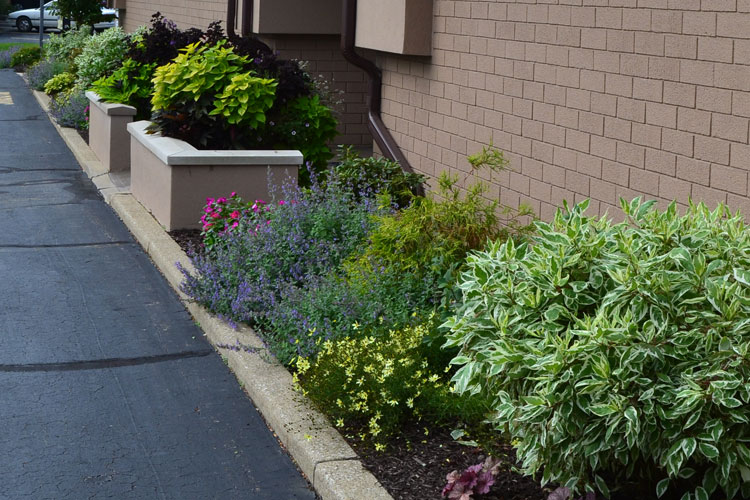 Summit Landscape Landscape Design Services
